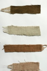 Oak gall and cutch botanical dyes by Loraine of Grijs