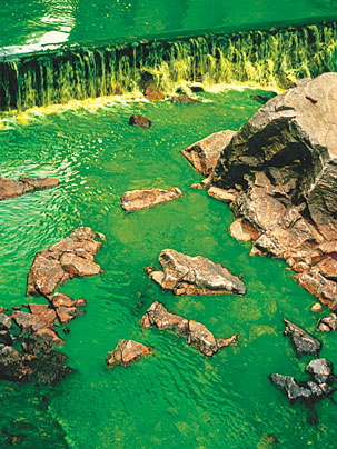 Olafur Eliasson Green River Project