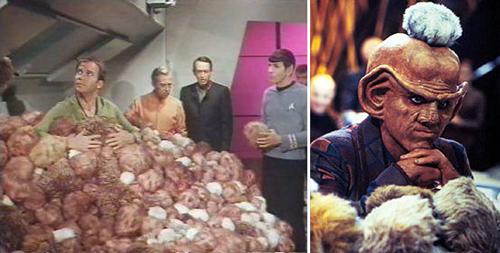 Tribbles on Star Trek original and Next Generation