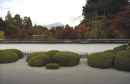 topiary karikomi ii-ne-kore