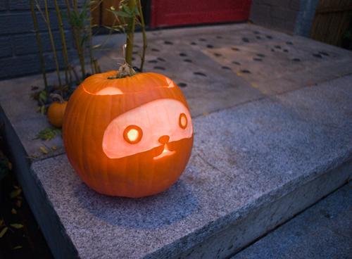 Pumpkin - tanuki by Scott Plumbe