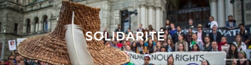 Idle No More - solidarity